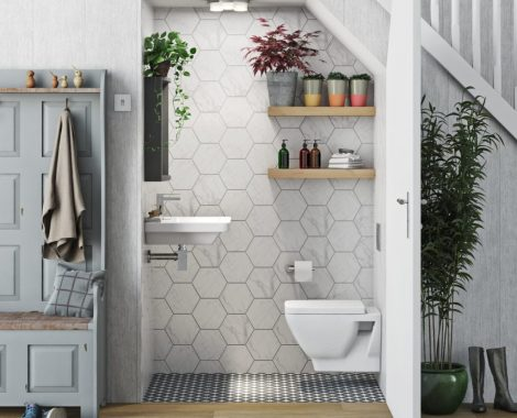 Cloakroom Under stairs to toilet ideas