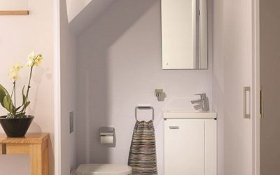 Tiny-Toilet-Under-Stairs